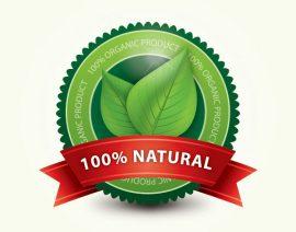 Warum Bio-Ernährung etwas bringt?